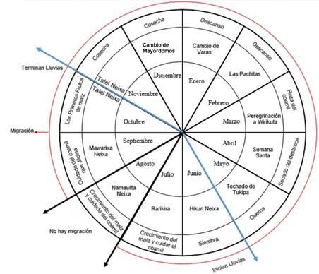 Articulación de los ciclos agrícola, ritual y migración.